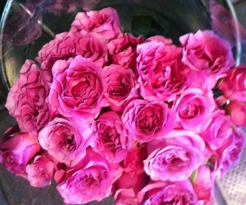 flores-interior1