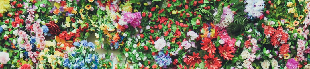flors_colors_web